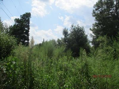 Berrien County, Lanier County, Lowndes County Residential Lots & Land For Sale: 6776 Clyattstone Road