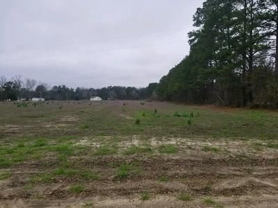 Berrien County, Lanier County, Lowndes County Residential Lots & Land For Sale: Lot Highway 82