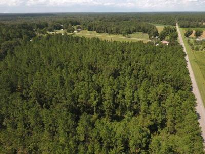 Berrien County, Lanier County, Lowndes County Residential Lots & Land For Sale: River Rd