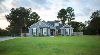 Berrien County, Brooks County, Cook County, Lanier County, Lowndes County Single Family Home For Sale: 38 Ruger Cir