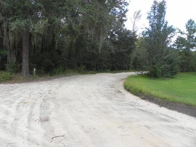 Lanier County Residential Lots & Land For Sale: Hwy 129