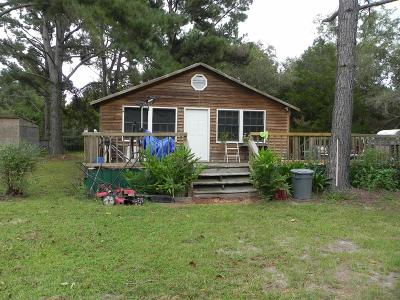Berrien County, Brooks County, Cook County, Lanier County, Lowndes County Single Family Home For Sale: 6189 Mullins Ln