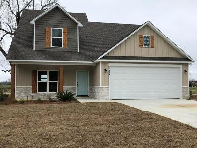 Berrien County, Brooks County, Cook County, Lanier County, Lowndes County Single Family Home For Sale: 3992 Karaline Circle