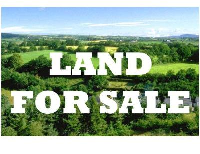 Residential Lots & Land For Sale: 3.3 Acre Savannah Rd.