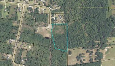 Lanier County Residential Lots & Land For Sale: Pine Drive