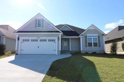 Hahira Single Family Home For Sale: 4217 Bright Creek