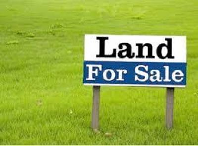 Berrien County, Lanier County, Lowndes County Residential Lots & Land For Sale: 4307 Johnson Rd. S