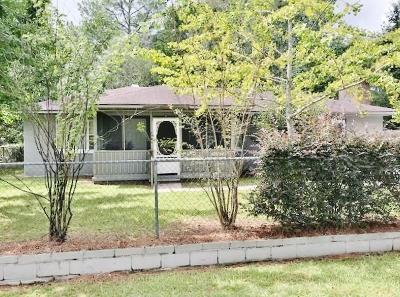 Berrien County, Brooks County, Cook County, Lanier County, Lowndes County Single Family Home For Sale: 256 Trixie Street