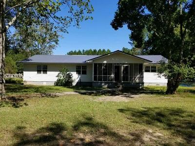 Berrien County, Brooks County, Cook County, Lanier County, Lowndes County Single Family Home For Sale: 409 Allenville Road