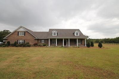 Berrien County, Brooks County, Cook County, Lanier County, Lowndes County Single Family Home For Sale: 2703 Moore Crossing Road