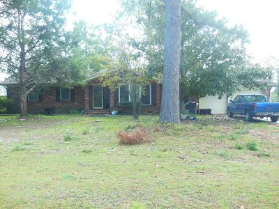 Berrien County, Brooks County, Cook County, Lanier County, Lowndes County Single Family Home For Sale: 3800 Midway