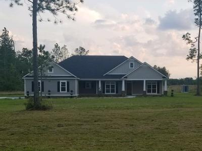 Berrien County, Brooks County, Cook County, Lanier County, Lowndes County Single Family Home For Sale: 1728 White Pond Road