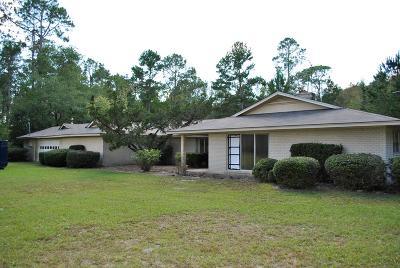 Berrien County, Brooks County, Cook County, Lanier County, Lowndes County Single Family Home For Sale: 4584 Boring Pond Rd.