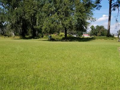 Lanier County Residential Lots & Land For Sale: Lot 3 Annie Mae Drive