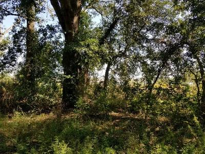 Lanier County Residential Lots & Land For Sale: Lot 58 W Stanley Lane