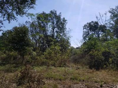 Lanier County Residential Lots & Land For Sale: Lot 59 W Stanley Lane