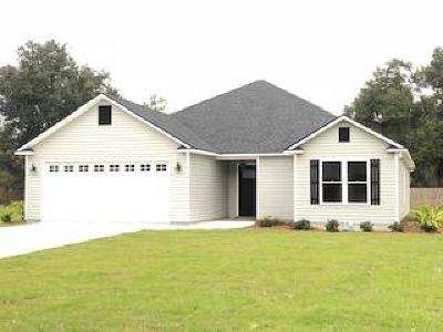 Berrien County, Brooks County, Cook County, Lowndes County Single Family Home For Sale: 4534 Caleb Creek