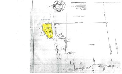 Lanier County Residential Lots & Land For Sale: 2.158 Ac Royals Rd.