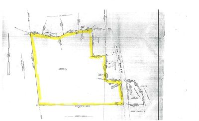 Commercial Lots & Land For Sale: 36 Acres Royals Rd.