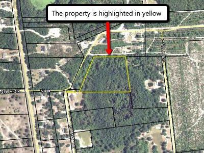 Lanier County Residential Lots & Land For Sale: Altman Drive