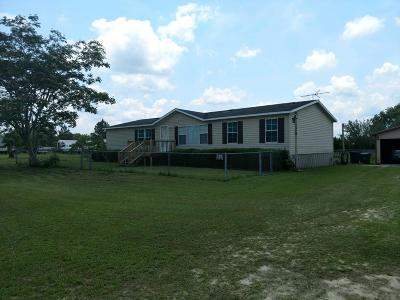 Berrien County, Brooks County, Cook County, Lanier County, Lowndes County Single Family Home For Sale: 676 Patricia Lane