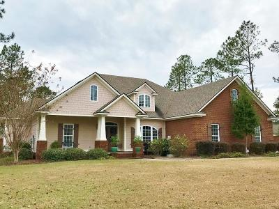 Hahira Single Family Home For Sale: 7323 Mill Ridge Drive