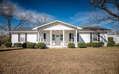 Berrien County, Brooks County, Cook County, Lanier County, Lowndes County Single Family Home For Sale: 14781 Georgia Hwy 122