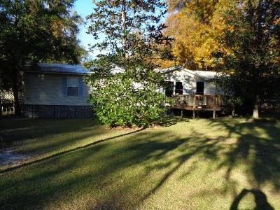 Berrien County, Brooks County, Cook County, Lanier County, Lowndes County Single Family Home For Sale: 4595 Scottwood Drive