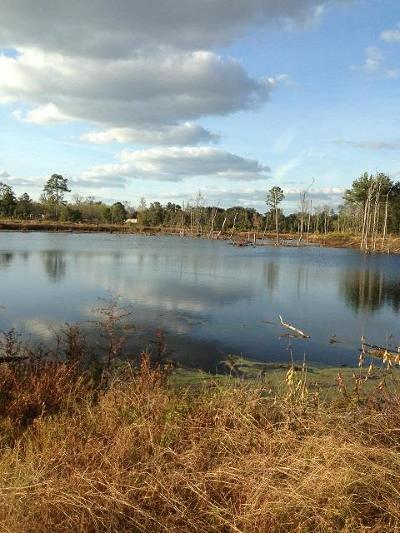Lanier County Residential Lots & Land For Sale: Acreage Tyler Road