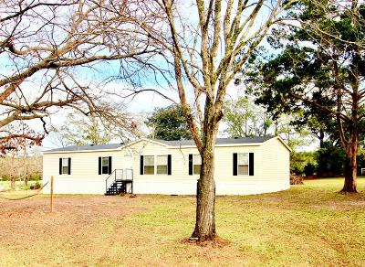 Berrien County, Brooks County, Cook County, Lowndes County Single Family Home For Sale: 353 Green Lake Circle