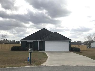 Lakeland Single Family Home For Sale: 13 Annie Drive