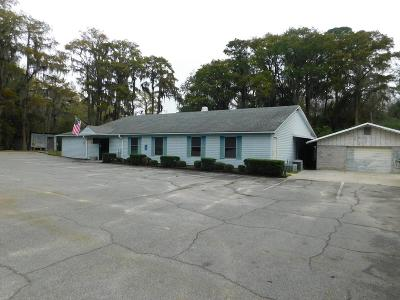Berrien County Commercial For Sale: 875 Rays Mill Pond Road
