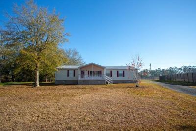 Berrien County, Brooks County, Cook County, Lanier County, Lowndes County Single Family Home For Sale: 132 Cameron Circle