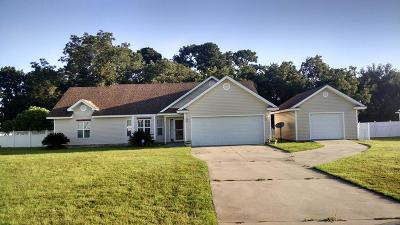 Berrien County, Brooks County, Cook County, Lanier County, Lowndes County Single Family Home For Sale: 161 Harlee Lane