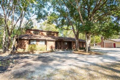 Single Family Home For Sale: 1200 Pineview Dr,