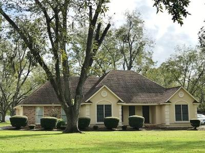 Berrien County, Brooks County, Cook County, Lanier County, Lowndes County Single Family Home For Sale: 4416 Old Us 41 N