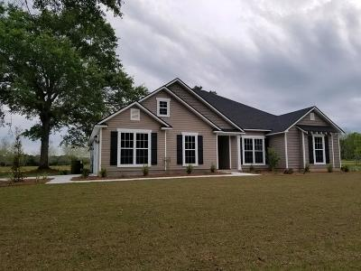 Berrien County, Brooks County, Cook County, Lanier County, Lowndes County Single Family Home For Sale: 1045 Studstill Road