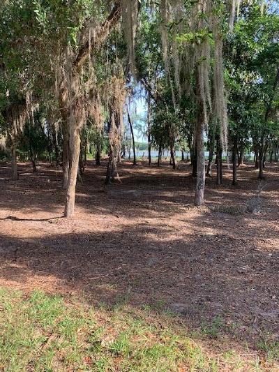 Berrien County, Lanier County, Lowndes County Residential Lots & Land For Sale: 5599 Timber Wind