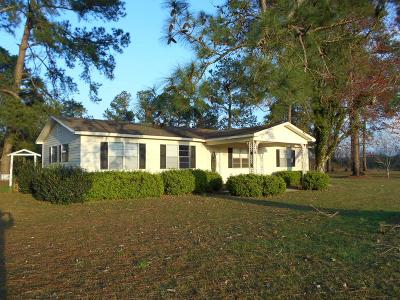 Berrien County, Brooks County, Cook County, Lanier County, Lowndes County Single Family Home For Sale: 810 Homer James Road