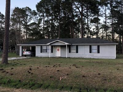 Berrien County, Brooks County, Cook County, Lanier County, Lowndes County Single Family Home For Sale: 20 Doe Street