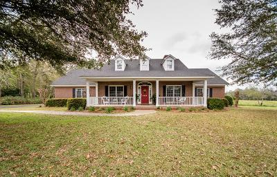 Single Family Home For Sale: 4046 Liska Circle