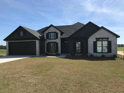 Berrien County, Brooks County, Cook County, Lanier County, Lowndes County Single Family Home For Sale: 3964 Crusader Court
