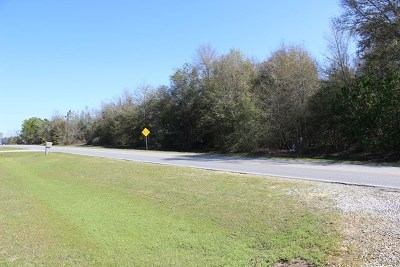 Commercial Lots & Land For Sale: S Carpenter Rd