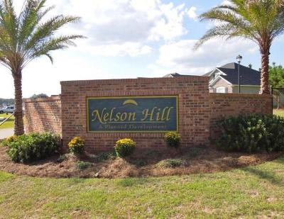 Lowndes County Single Family Home For Sale: 4154 Nelson Hill Place