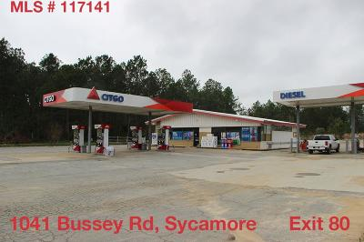 Commercial For Sale: 1041 Bussey Rd