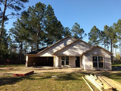 Berrien County, Brooks County, Cook County, Lanier County, Lowndes County Single Family Home For Sale: 5781 Shasta Pines