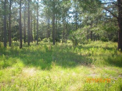 Berrien County Residential Lots & Land For Sale: Lot Sandridge Lane