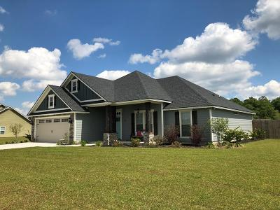 Berrien County, Brooks County, Cook County, Lanier County, Lowndes County Single Family Home For Sale: 2772 Rabbit Ridge Run
