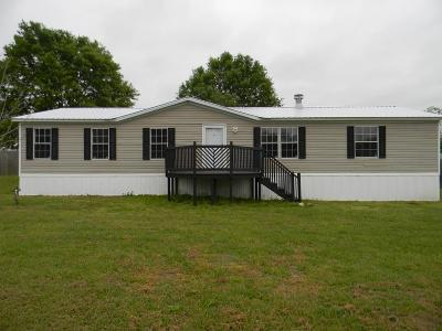 Berrien County, Brooks County, Cook County, Lanier County, Lowndes County Single Family Home For Sale: 93 Peachtree Drive