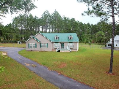 Berrien County, Brooks County, Cook County, Lanier County, Lowndes County Single Family Home For Sale: 5092 Ousley Rd